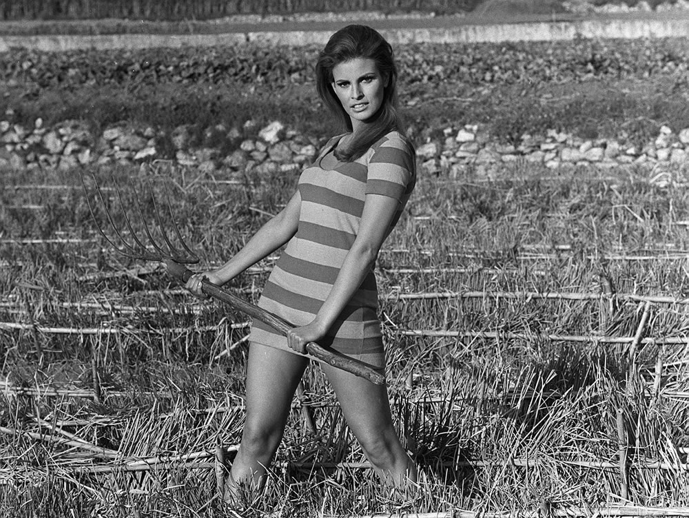 Raquel Welch Art Print