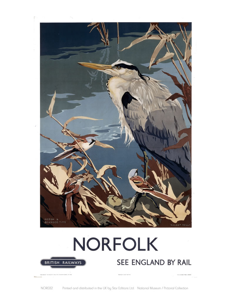 Norfolk Heron Art Print