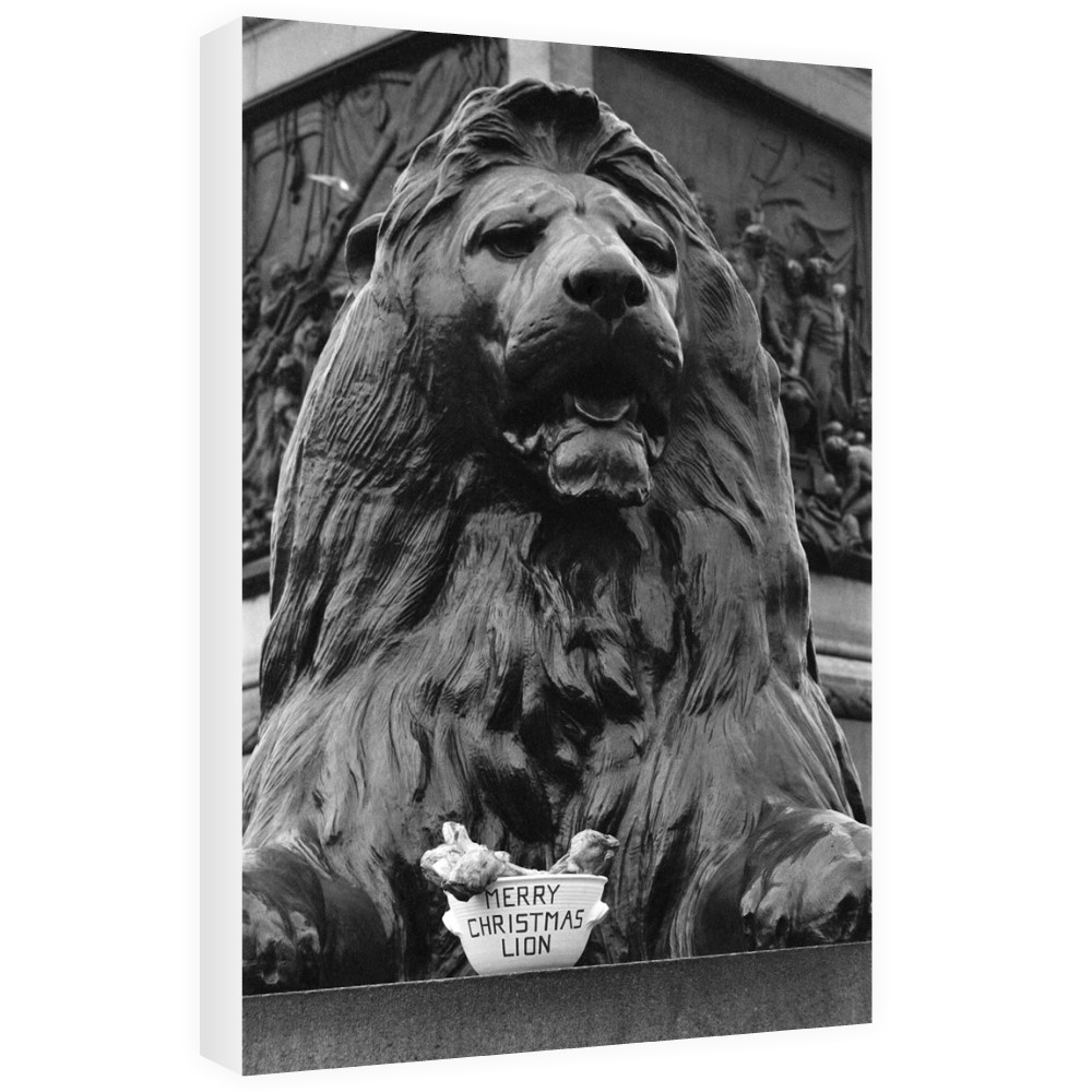 A seasonal gift for Nelson's lion, 1975 Canvas