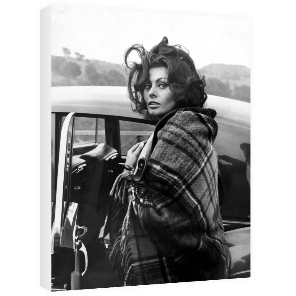 Sophia Loren  Canvas
