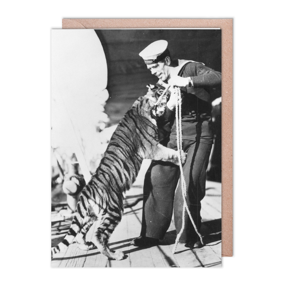 Tiger Cub on HMS Kent Greeting Card (x2)