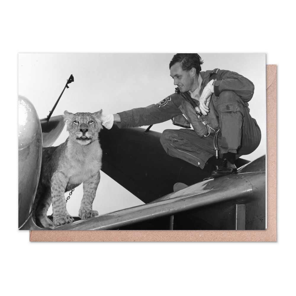 892 Squadron mascot Greeting Card (x2)