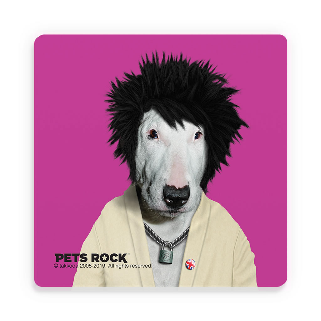 Punk Pets Rock Ceramic Coaster