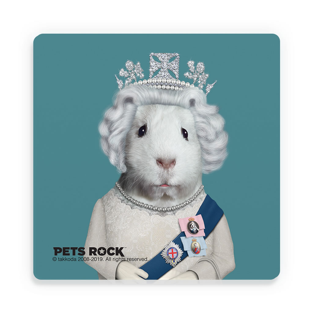 HRH Pets Rock Ceramic Coaster