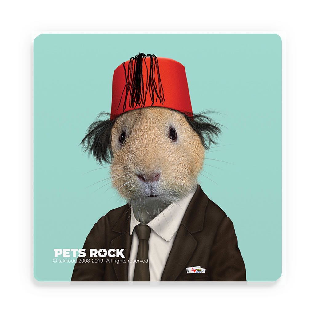 Magic Pets Rock Ceramic Coaster