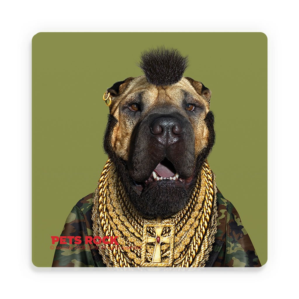 Fool Pets Rock Ceramic Coaster