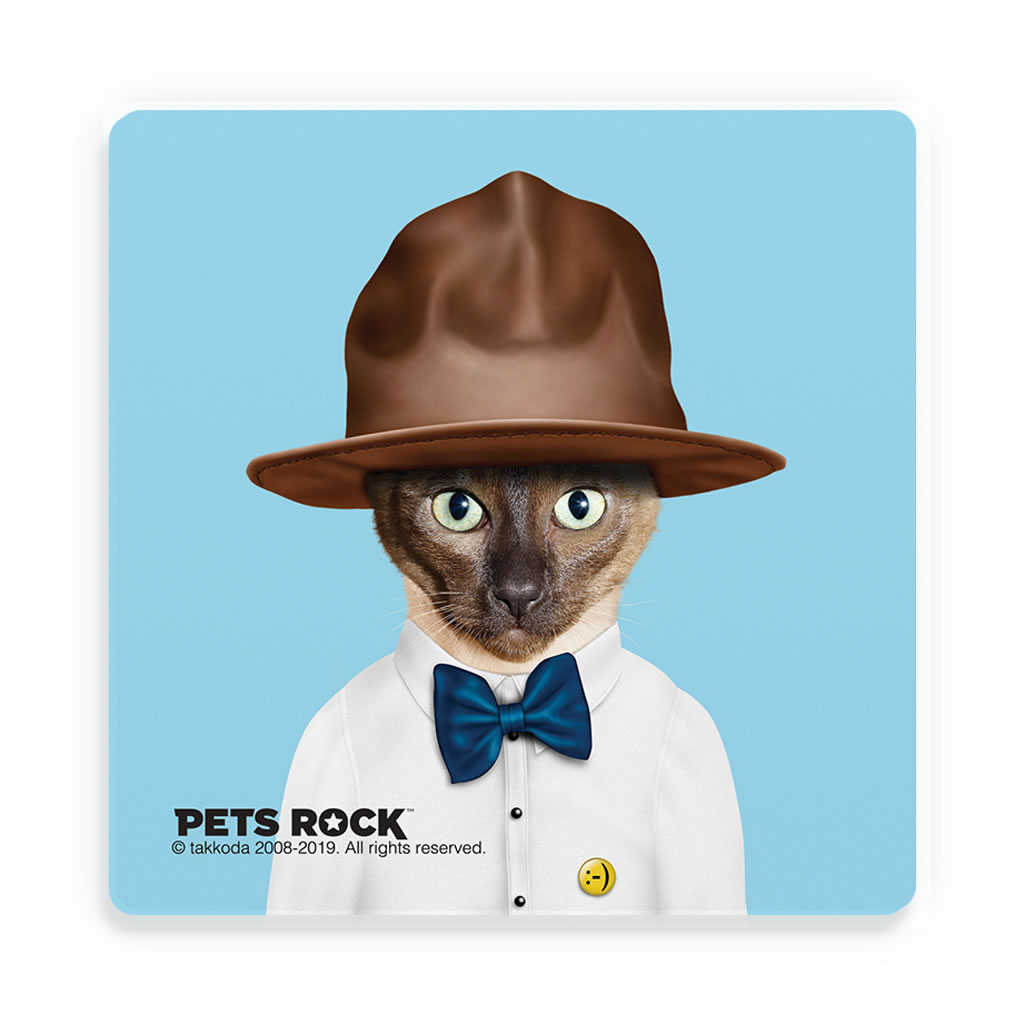 Purrell Pets Rock Ceramic Coaster