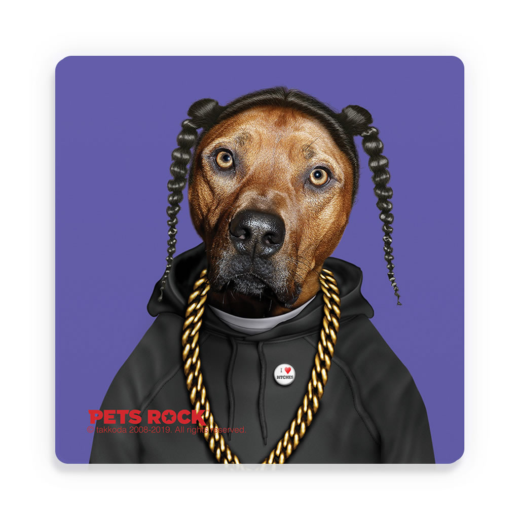 Rap Pets Rock Ceramic Coaster