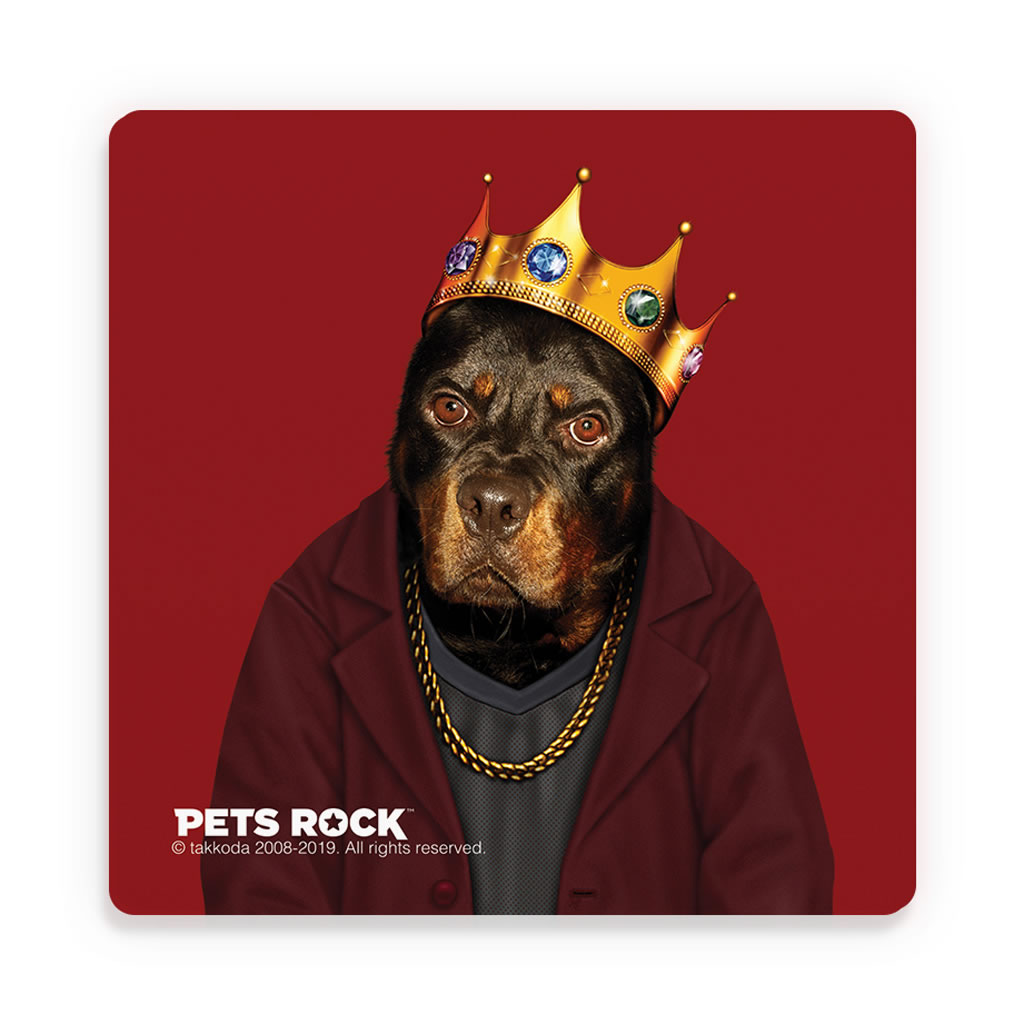 Big Doggie Pets Rock Ceramic Coaster