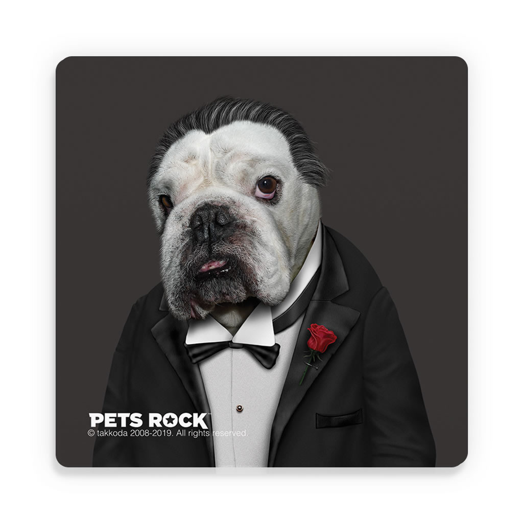 Dog Father Pets Rock Ceramic Coaster