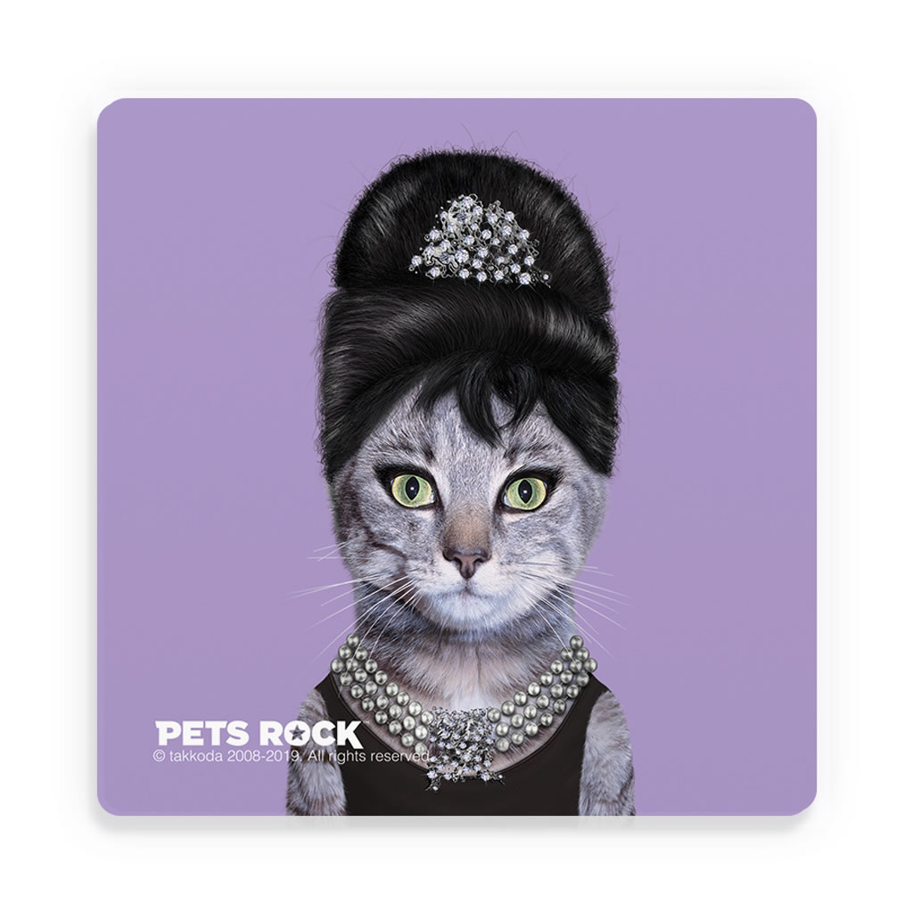 Breakfast Pets Rock Ceramic Coaster