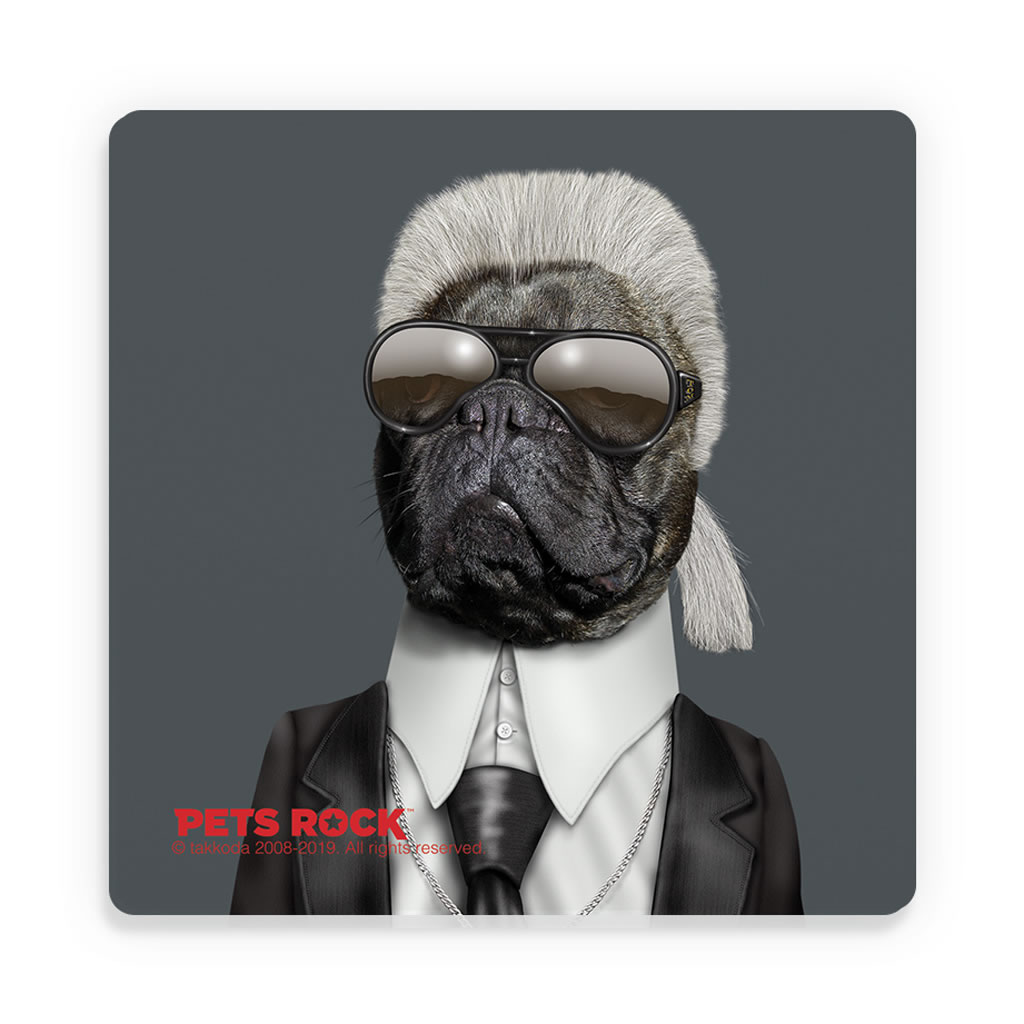 Fashion Pets Rock Ceramic Coaster