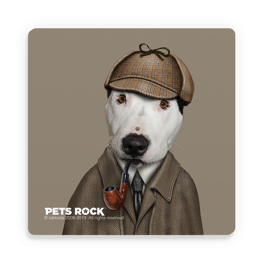 Detective Pets Rock Ceramic Coaster