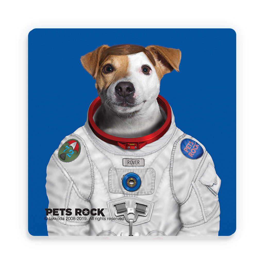 Rover Pets Rock Ceramic Coaster