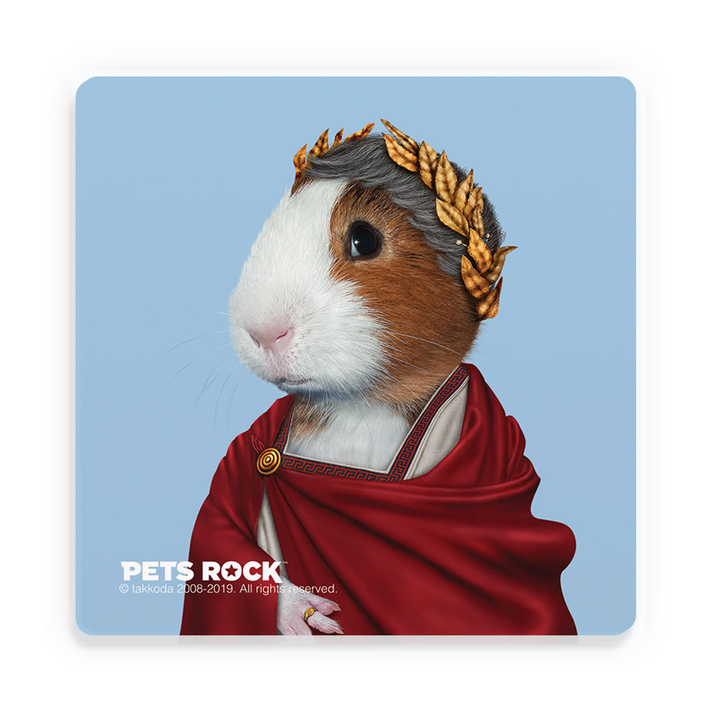 Caesar Pets Rock Ceramic Coaster