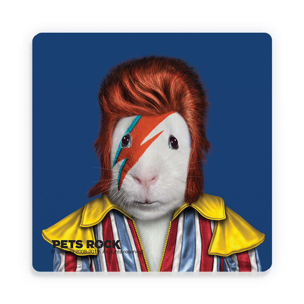Glam Rock Pets Rock Ceramic Coaster