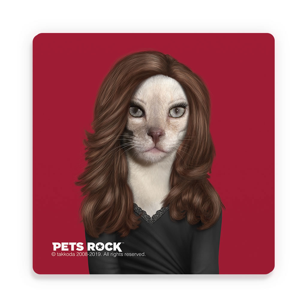Hollywood Lady Pets Rock Ceramic Coaster