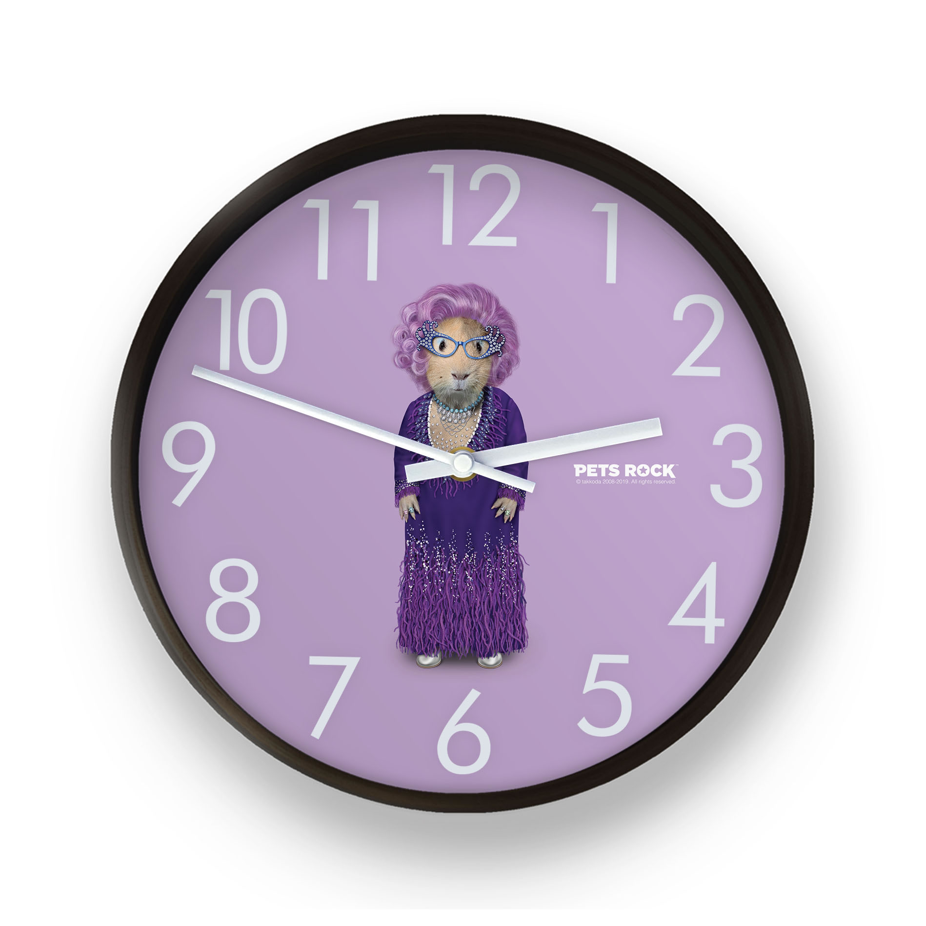 Possum Pets Rock Wall Clock