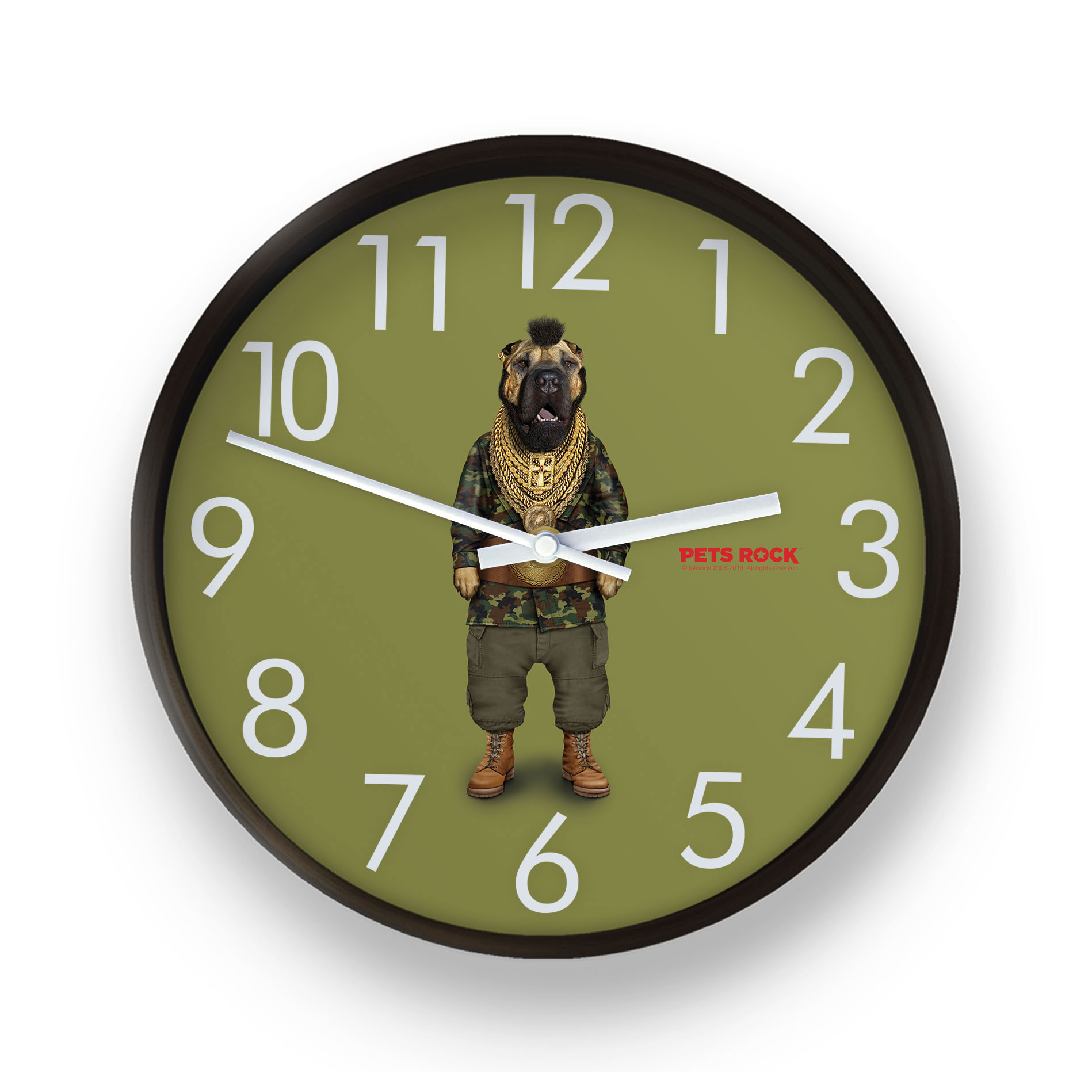 Fool Pets Rock Wall Clock