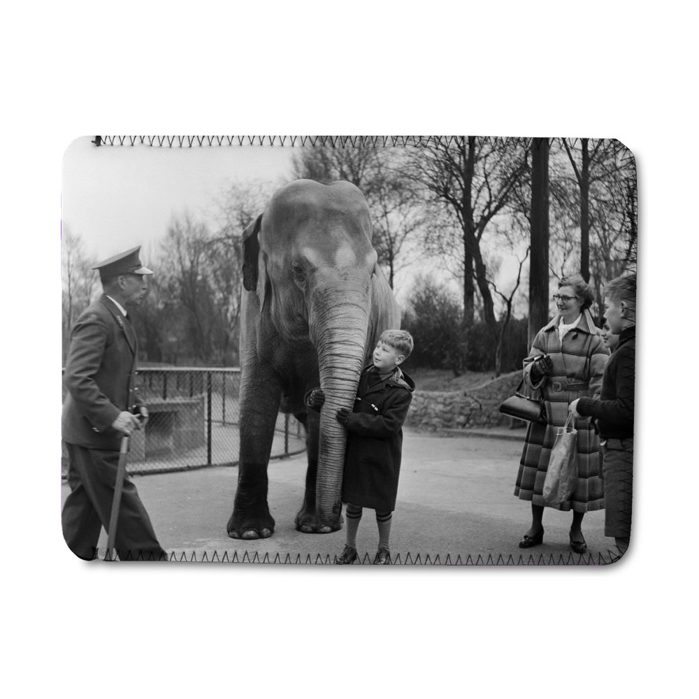 A young boy allowed to touch an elephant at London Zoo. 29th December 1954. iPad Sleeve