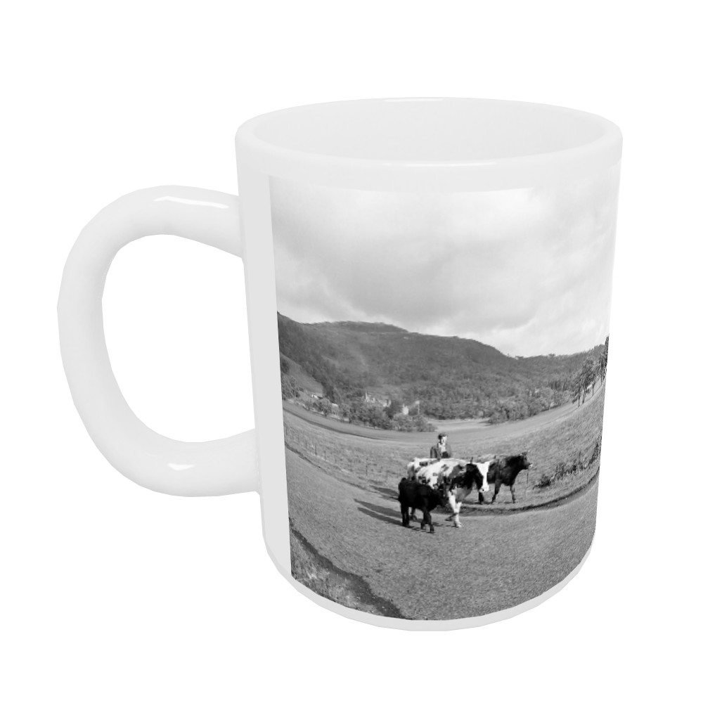 Trossachs, Scotland, 1956 Mug