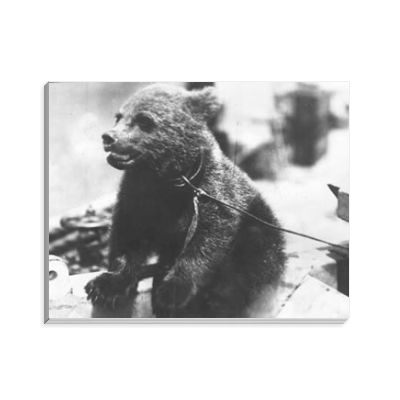 Bear Cub on HMS Ajax Notepad