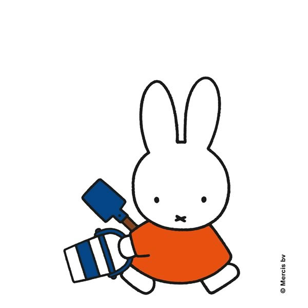 miffy - Personalised Framed and Mounted Art Print