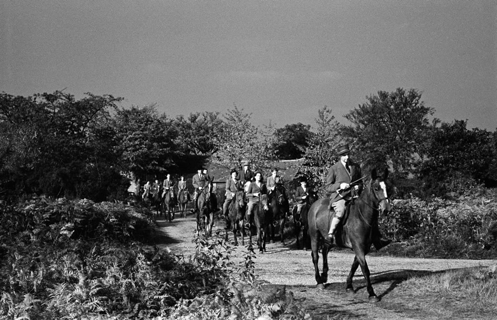 Cross country horse riding in.. Art Print