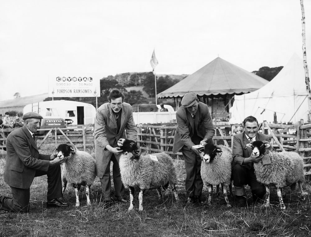 Agricultural Show, Danby, North Yorkshire, 1964 Art Print