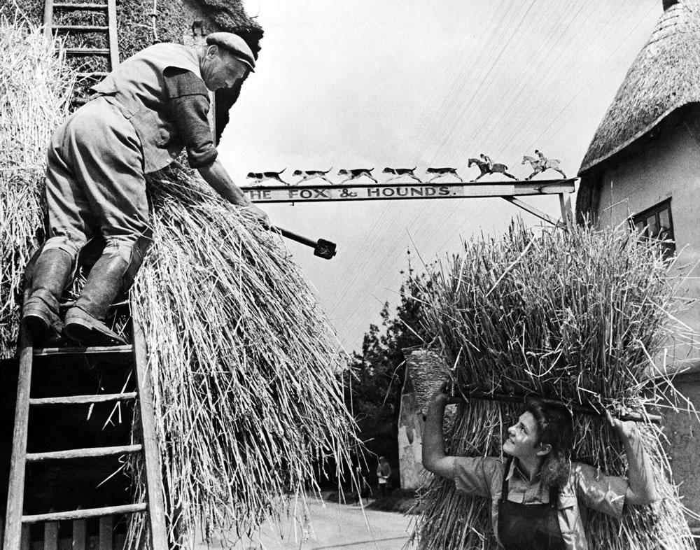 Barley, Hertfordshire, 1944 Art Print
