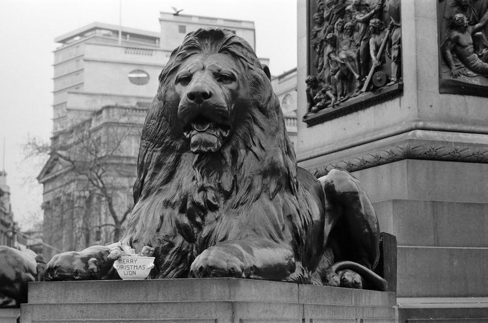 A seasonal gift for Nelson's lion, 1975 Art Print
