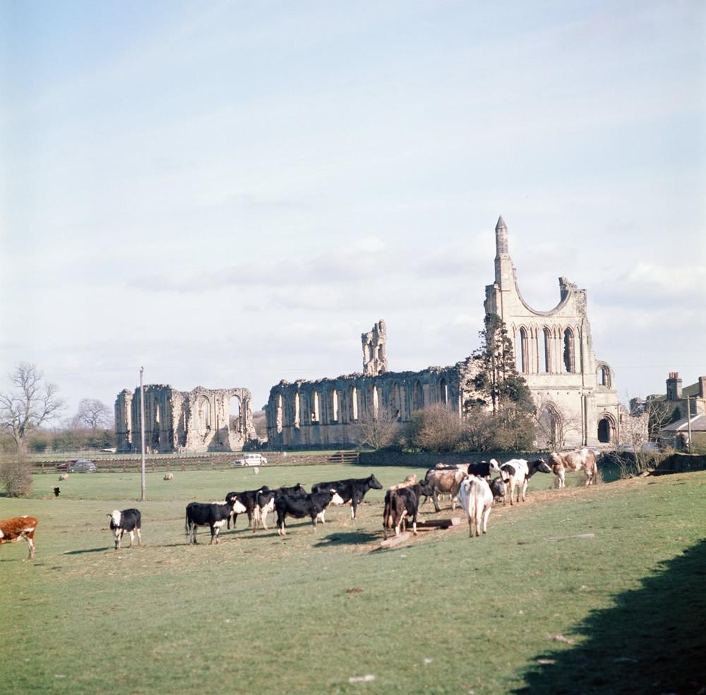 Byland Abbey, North Yorkshire, 1974 Art Print Art Print