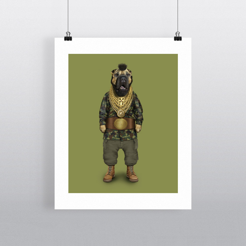 Fool Pets Rock 11' by 14' Art Print
