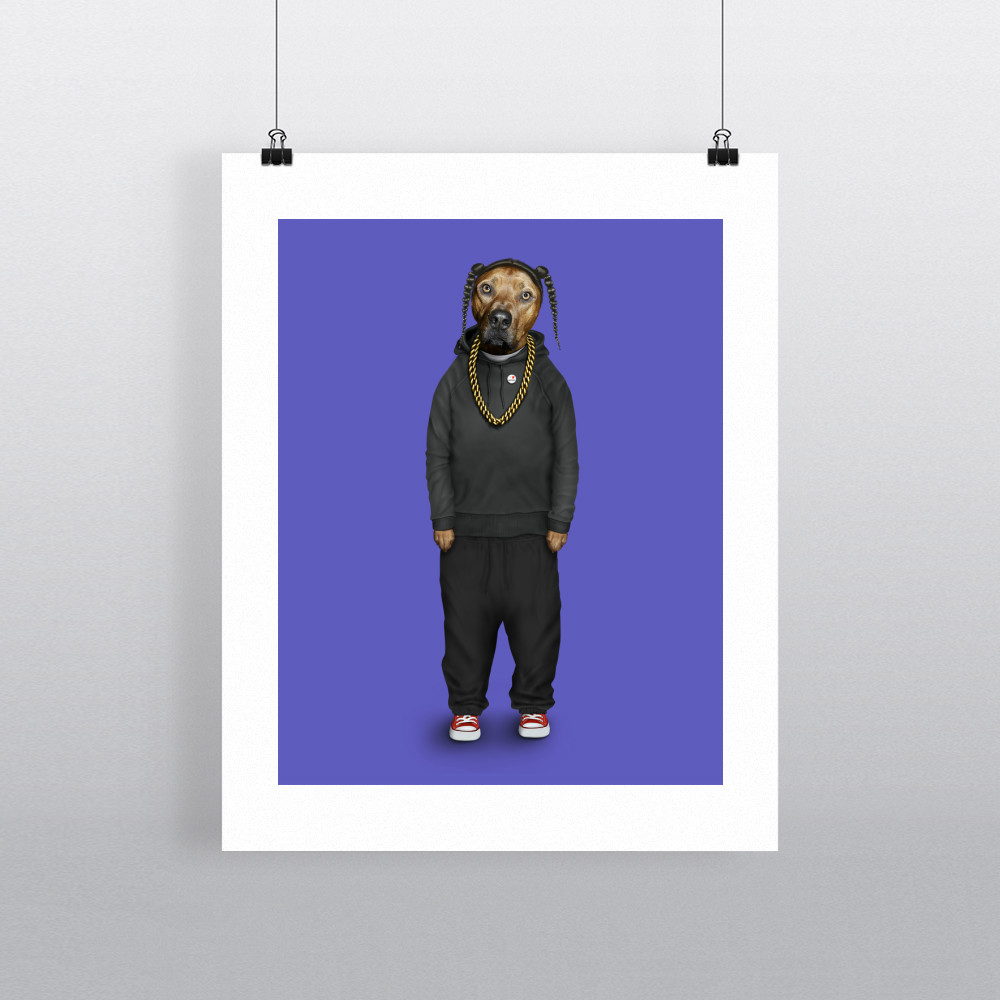 Rap Pets Rock 11' by 14' Art Print