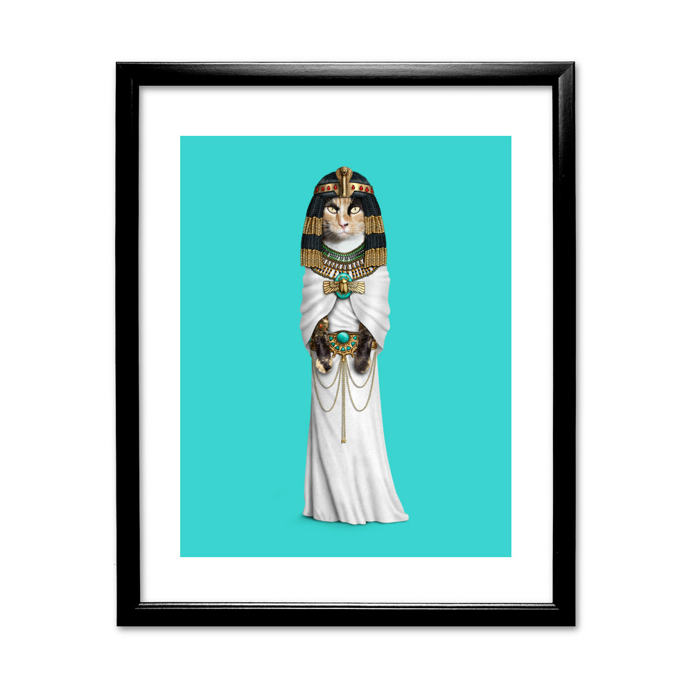 Cleopatra Pets Rock 11' by 14' Black Framed Art Print