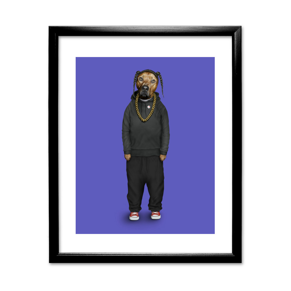 Rap Pets Rock 11' by 14' Black Framed Art Print
