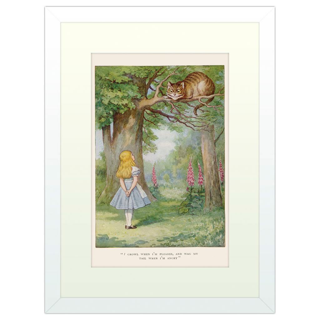 Alice's Adventures in Wonderland - White Framed Art Print (40x30cm) White Framed Art Print