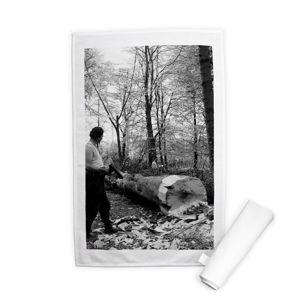 Men chopping a tree down in Ashridge.. Tea Towel