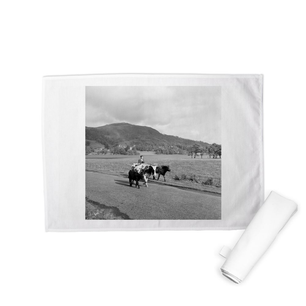 Trossachs, Scotland, 1956 Tea Towel
